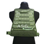 MBSS Plate Carrier Olive Drab